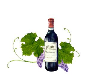 ワインボトルと葡萄のイラスト素材 [FYI04561275]
