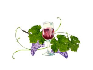 赤ワインと葡萄のイラスト素材 [FYI04561278]