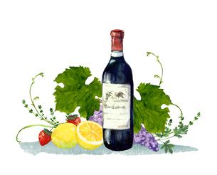 ワインとフルーツ水彩イラストのイラスト素材 [FYI04561279]