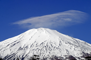 12月 青空に映える冠雪の富士山の写真素材 [FYI04561379]