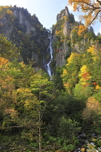 9月 層雲峡の紅葉  -北海道の秋-の写真素材 [FYI04561389]