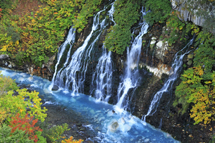 9月 白髭の滝  -北海道の秋-の写真素材 [FYI04561403]