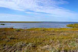 アラスカ州Sag River(ザック川)夏の川面の写真素材 [FYI04561419]
