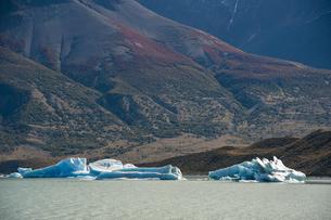 パタゴニアのビエドマ氷河:湖の氷塊の写真素材 [FYI04561423]