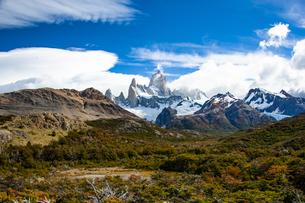 パタゴニアの名峰フィッツロイと南極ブナの森の写真素材 [FYI04561466]