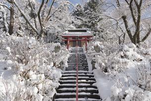 雪に覆われた田舎の神社の参道と鳥居の写真素材 [FYI04561970]