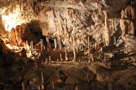 世界有数の神秘空間・地下世界③ ポストイナ鍾乳洞(スロベニア)の写真素材 [FYI04562033]