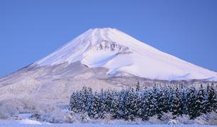 静岡県 十里木高原より降雪後の富士山の写真素材 [FYI04562154]