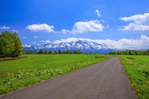 道と大雪山の写真素材 [FYI04562305]