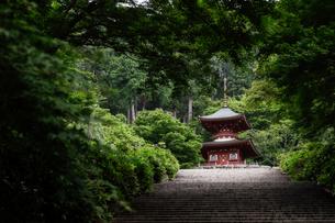 勝尾寺多宝塔の写真素材 [FYI04562351]