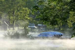 福島県裏磐梯曽根原湖の新緑の朝とボートの写真素材 [FYI04562375]