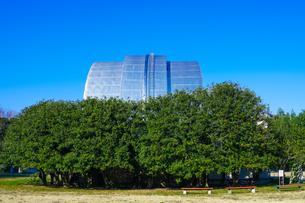 自動光電子環 国立天文台(東京都三鷹市)の写真素材 [FYI04562673]