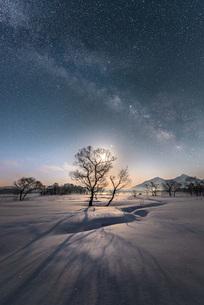 雪原に奏でる光の写真素材 [FYI04563005]