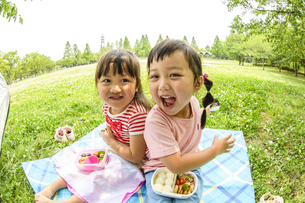 並んでお弁当を食べる女の子の写真素材 [FYI04563053]