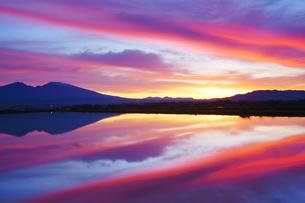 五郎兵衛米の水鏡の田園と浅間山と朝焼けの写真素材 [FYI04563981]