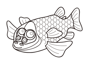 デメニギス 深海魚 キャラクター ぬりえ イラストのイラスト素材 [FYI04564213]