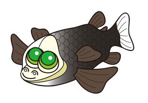 デメニギス 深海魚 キャラクター イラストのイラスト素材 [FYI04564220]