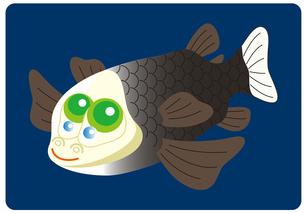 デメニギス 深海魚 キャラクター イラストのイラスト素材 [FYI04564227]
