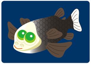 デメニギス 深海魚 キャラクター イラストのイラスト素材 [FYI04564230]