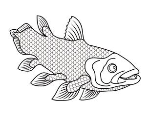 シーラカンス 深海魚 キャラクター イラスト クリップアートのイラスト素材 [FYI04564241]