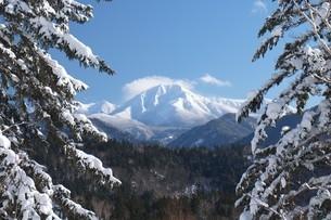 冬、白銀のニペソツ山と青空の写真素材 [FYI04564536]