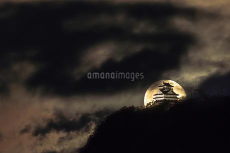 雲の波間にの写真素材 [FYI04564551]