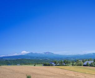 北海道 自然 田園風景 美瑛の写真素材 [FYI04564698]