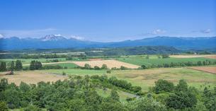 北海道 自然 田園風景 美瑛の写真素材 [FYI04564739]