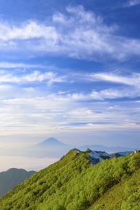 山梨県 夏の南アルプス観音岳より富士山の写真素材 [FYI04564807]
