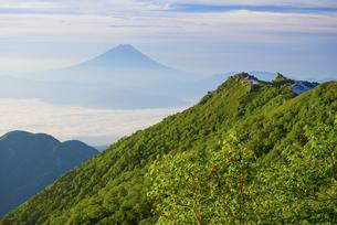 山梨県 夏の南アルプス観音岳より富士山の写真素材 [FYI04564813]