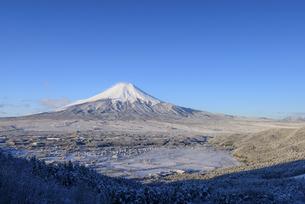 山梨県 降雪の忍野村より富士山の写真素材 [FYI04564836]