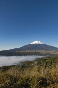 大平山山頂より望む山中湖を覆う雲海越しの富士山の写真素材 [FYI04564885]