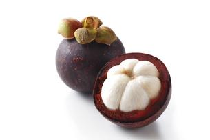 マンゴスチン・果物・熱帯果物の写真素材 [FYI04564980]