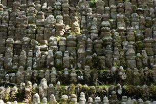 世界遺産高野山無縁仏の写真素材 [FYI04565119]