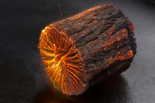 燃える炭火の写真素材 [FYI04565239]
