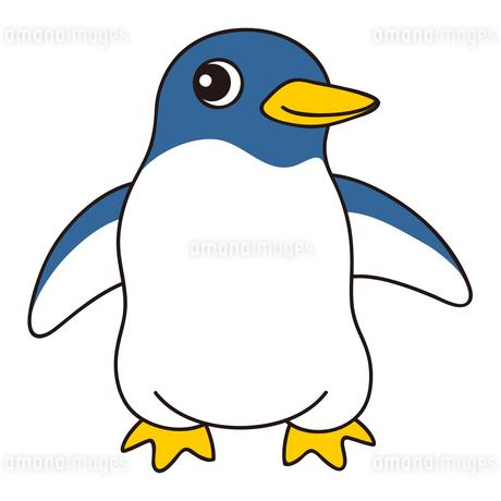 アデリーペンギン キャラクター イラストのイラスト素材 [FYI04565286]