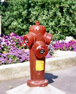 フランス プロバンス地方 消火栓の写真素材 [FYI04565955]