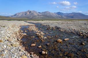 アラスカ州、雪解けの水流の写真素材 [FYI04566171]