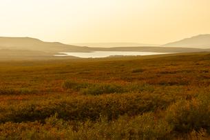 アラスカ州、夏の黄昏の写真素材 [FYI04566174]