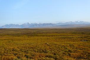 アラスカの草原と山並みの写真素材 [FYI04566175]