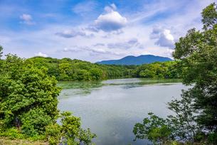福岡県 篠栗九大の森の写真素材 [FYI04566942]