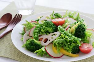 白い皿に盛り付けた野菜サラダの写真素材 [FYI04567230]
