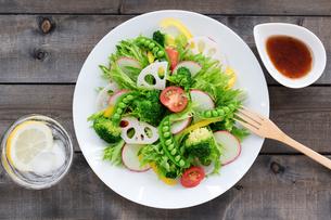 白い皿に盛り付けた野菜サラダの写真素材 [FYI04567233]