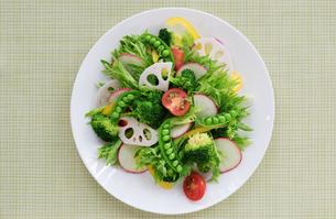 白い皿に盛り付けた野菜サラダの写真素材 [FYI04567240]
