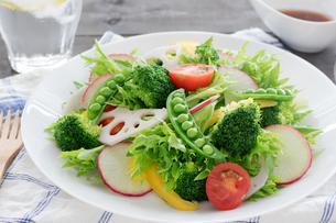 白い皿に盛り付けた野菜サラダの写真素材 [FYI04567243]