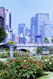 超高層ビルとバラの公園の写真素材 [FYI04567288]