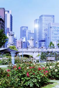 超高層ビルとバラの公園の写真素材 [FYI04567365]