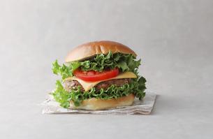 ハンバーガーの写真素材 [FYI04567615]