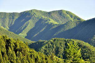 朝の展望 奥多摩の狩倉山の写真素材 [FYI04568027]