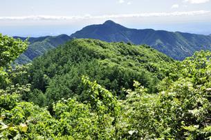 御前山より大岳を望むの写真素材 [FYI04568068]